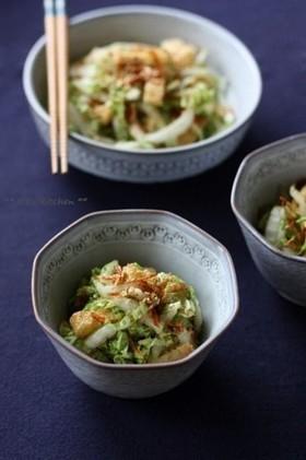 からし酢醤油で。白菜と桜海老のサラダ