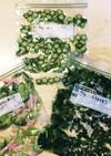 緑の野菜作り置き。冷凍保存。すぐ使える。