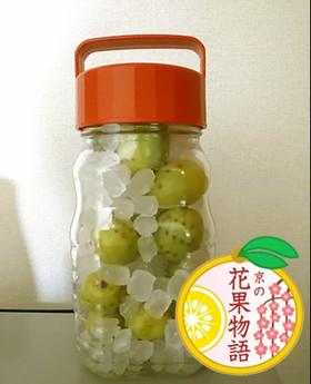 【京の花果物語】青谷の梅シロップ