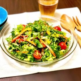 パクチーとツナ、彩り野菜のタイ風サラダ♡