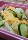お弁当☆卵きゅうりキャベツ☆すしのこ和え