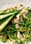 簡単豆苗と豚の冷しゃぶサラダ