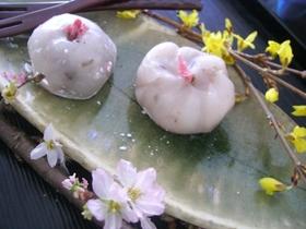 お花見に☆桜の和菓子