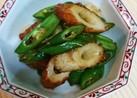 万願寺唐辛子と竹輪炒め焼肉味