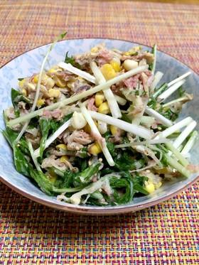 わが家のダイコン・水菜とサバ缶サラダ