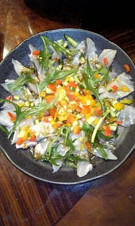 スズキ(白身魚)のカルパッチョ
