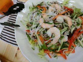 糖質カット☆タイ風ボリューム麺サラダ
