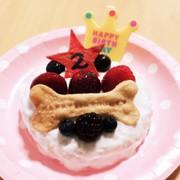 超簡単!犬用ケーキ!の写真