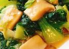 チンゲン菜とエリンギのオイスター炒め
