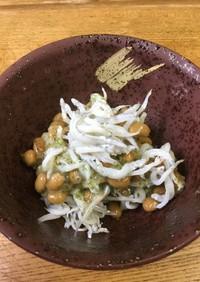 ジャコおろし納豆✨血液サラサラ玉ねぎ編♫