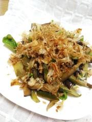 ナス胡瓜ピーマン麺つゆマヨ炒め鰹節のせの写真