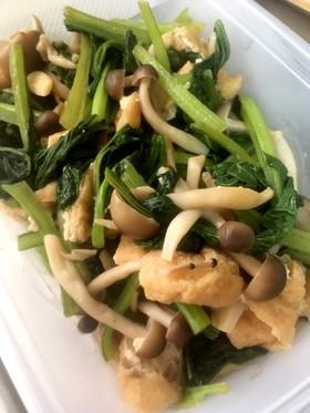 常備菜 小松菜とキノコと油揚げ