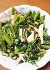 空心菜とエリンギのシーチキン炒め