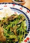 ダイエット!サバの水煮缶と豆苗と舞茸炒め