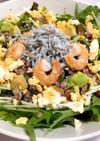 しらすと海老の穀物米入り水菜ミモザサラダ