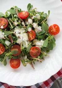 プルピエとミニトマトのヨーグルトサラダ