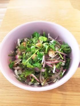 ひよこ豆とパクチーのサラダ