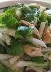 サラダチキン、大根、パクチーのサラダ