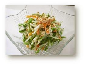 京みず菜の豆腐ドレッシングサラダ