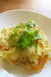 創作タイ料理 春雨のグリーンカレー炒めの写真
