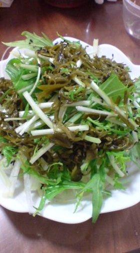 野菜モリモリ!シャッキリサラダ