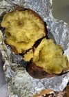 キャンプの炭火で簡単焼き芋