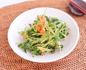 豆苗のサラダ にんじんドレッシング