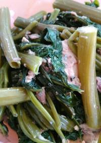 空芯菜と鯖水煮缶のオイスターソース炒め