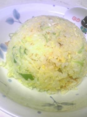 ネギ塩☆黄金炒飯♪