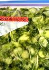 きゅうり 水菜 レタスのマリネ 冷凍保存