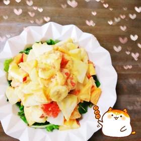 マクロビ☆柿ドレッシングのフルーツサラダ