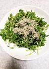 美味すぎる!簡単豆苗と韓国海苔のサラダ