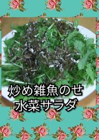 炒め雑魚のせ水菜サラダ