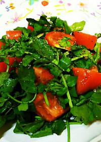 トマトとクレソンで自家製柚子ドレッシング