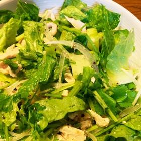 レンチン蒸し鶏とパクチーのサラダ