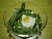さやえんどうと卵の煮物の写真