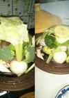 蒸し料理(血管ダイエット1314)