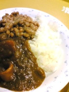 辛子きかせて☆納豆カレー