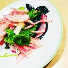 簡単♪彩り♪赤カブとサンチュのサラダ