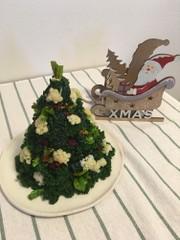 クリスマスツリーサラダの写真