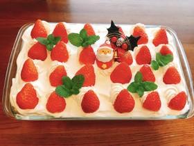クリスマスにスコップケーキ♪