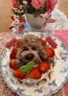 チョコレート ケーキ(トイプードル)