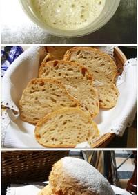 ポルトガルの田舎パン用★天然酵母種★