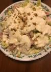 鶏肉と白菜のホワイトサラダ