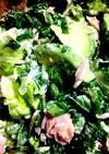 セロリの葉っぱとアボカドのグリーンサラダ