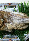 鯛の姿焼き(にらみ鯛)