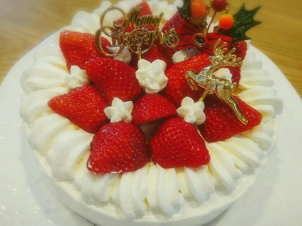 2018クリスマスケーキ(デコ記録)