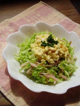 パンにピッタリ♡卵とキャベツのサラダ