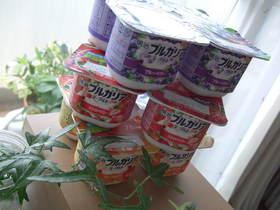 ☆Rくんのヨーグルトの食べ方☆