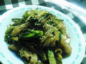青菜とキャベツのショウガ炒め
